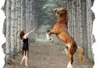 Русская женщина «Коня на скаку остановит...».