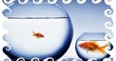 Разный возраст между мужчиной и женщиной расчет или положительная аномалия?