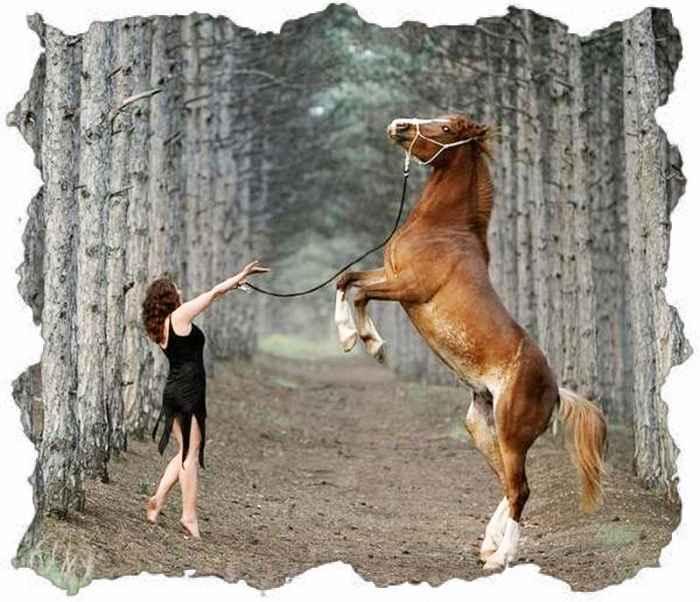 Русская женщина и конь встал на дыбы