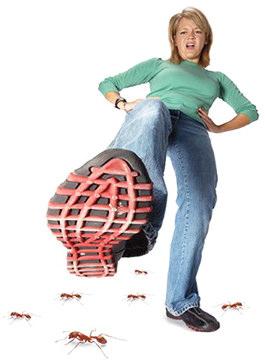 Атака муравьев