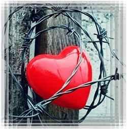 Сердце не может разлюбить