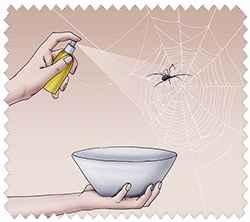 Я убиваю паука