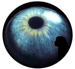 Вечерний глаз